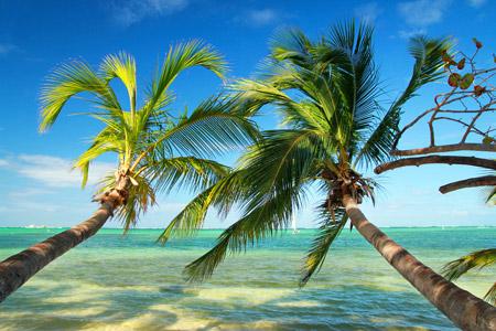 Beautiful tropical beach_Bahamas_credit pavel Chernobrivets