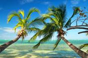 Vorschlag Yachtcharter Destinationen für Januar, Februar & März