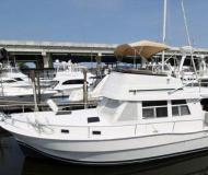 Yacht Mainship 390 Trawler Yachtcharter in Frenchtown Harbour Marina