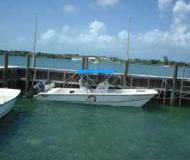 Yacht Twin Vee 26 Yachtcharter in Abaco Beach Resort