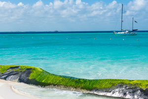 Yacht Charter Mexico
